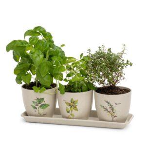 Herb Planter Set